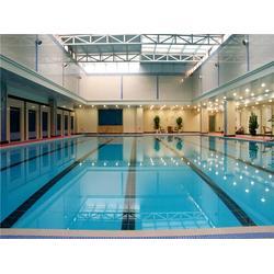 建造游泳池厂家,桂林建造游泳池,雨乐环保(查看)图片