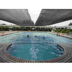 雨乐环保游泳池、游泳池、农村游泳池设计安装图片
