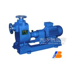 自吸式离心泵制造商良邦供图片