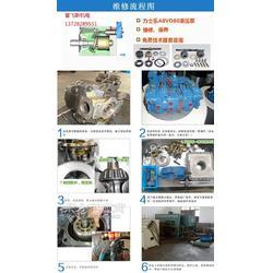 维修Rexroth/力士乐A11VO190LRH2/10R-NPC12N00,柱塞泵图片