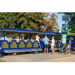厦门朗迈电动车 内燃机小火车-长乐内燃机小火车