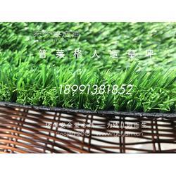人造草坪多少钱一平米,人工草坪图片