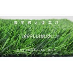 塑料草坪厂家,仿真人造草坪图片