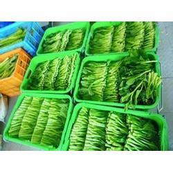 农庄蔬菜配送-苏州北半球食品有限公司-杭州蔬菜配送图片