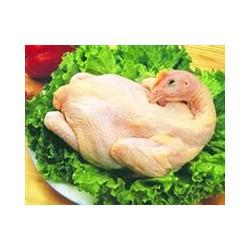 家禽,苏州北半球食品有限公司图片