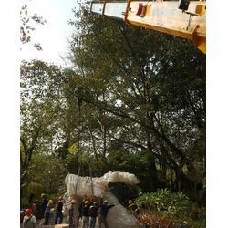 广州吊车出租,众鸿24小时提供吊车出租,广州白云同和吊车出租图片