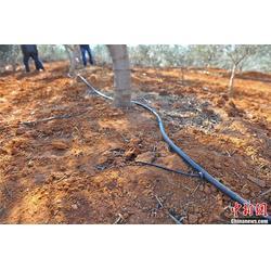 南宁固定式微灌、亿安鑫节水灌溉(在线咨询)、固定式微灌设备图片