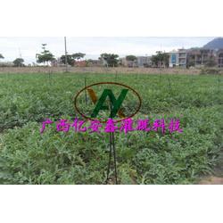 广西果园灌溉设计、亿安鑫节水灌溉、果园灌溉设计报价图片