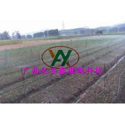 广西果园灌溉设计、亿安鑫节水灌溉、果园灌溉设计哪家好图片