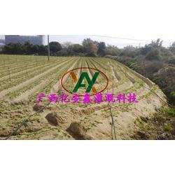 果园灌溉设计哪家好、贵港果园灌溉设计、亿安鑫节水灌溉图片