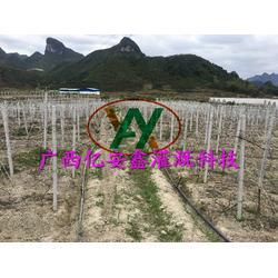 广西微灌 亿安鑫节水设备 农田微灌图片