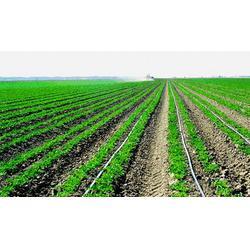 广西成套灌溉系统|亿安鑫|成套灌溉系统销售图片