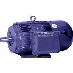 铅山振动电机图片