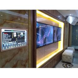 广州天王总代理(在线咨询)从化天王vod点播系统安装图片