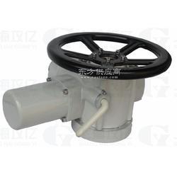 供应DZW阀门电动执行器图片