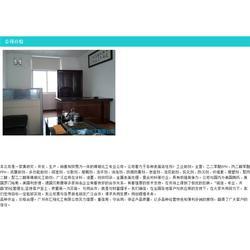 进口多功能助剂厂家,淮北多功能助剂厂家,amp-95图片