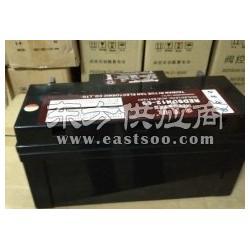 PCM蓄电池型号参数图片