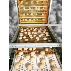 产蛋箱捡蛋带,原装进口图片