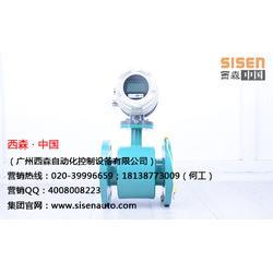 西森,广西大口径电磁流量计,广西大口径电磁流量计厂商图片