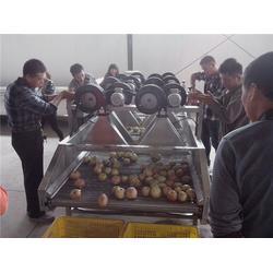 大包装袋食品风干机效果-诸城龙翔工贸-重庆大包装袋食品风干机图片