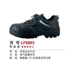拉福安全鞋、苏州益良安(在线咨询)、安全鞋图片