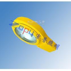 BLC8610-N400防爆路灯图片