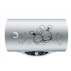 石家庄电热水器,中旺立华【福利多多】,厨房电热水器图片