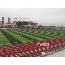 襄樊塑胶跑道、广州帝森、新国标塑胶跑道材料图片