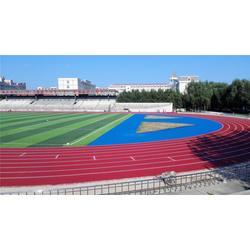 学校塑胶跑道一体供应_大连塑胶跑道_广州帝森(多图)图片