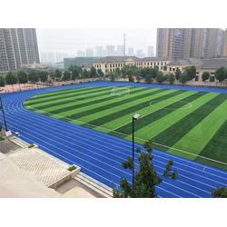 广州帝森、江阴塑胶跑道、学校塑胶跑道一体供应图片