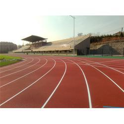 丽水塑胶跑道|广州帝森(在线咨询)|塑胶跑道工程建造商图片