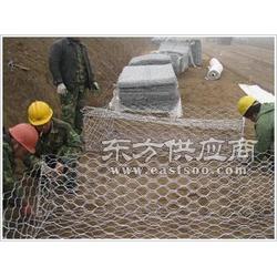 格宾网 山坡养鸡防护网 铁丝网片 河道石笼网 镀锌铅丝网图片