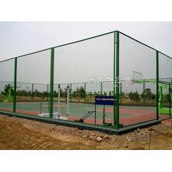 安首供应篮球场围网 果园围栏网 养殖防护网 荷兰网 铁丝网 球场围网图片