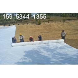 150克公路养护土工布湖南报价1.2元每平米图片