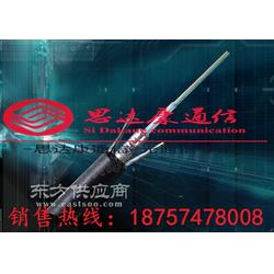 GYTS144芯管道光缆厂家直销图片
