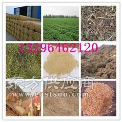 牧草生产厂家图片