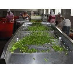 蔬菜加工流水线哪家好-蔬菜加工流水线-诸城国泰机械图片