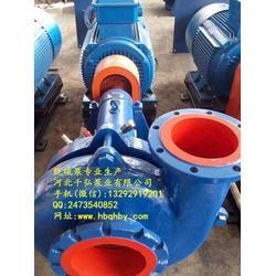 脱硫泵厂家-65DT-A40脱硫泵后护板、洗选煤配用泵图片
