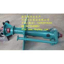 立式渣浆泵厂家_耐腐蚀液下渣浆泵、50ZJL-A35图片