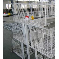 热镀锌肉鸡笼出售-江苏热镀锌肉鸡笼-牧辰鸡笼厂家(查看)图片