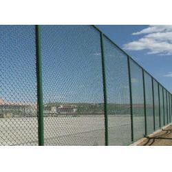丽江网球场护栏|兴顺发筛网专业厂家|网球场护栏哪家好图片