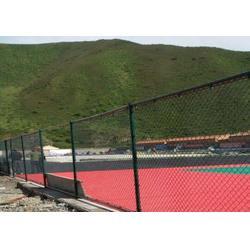 操场围栏网材质、水富县操场围栏网、兴顺发筛网实力厂家图片