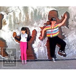 滁州壁画、南京隐形翅膀艺术公司、3d大型壁画图片