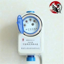 远传水表|山虎仪表(在线咨询)|阀控远传水表厂商图片