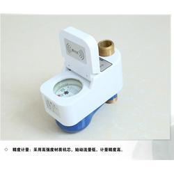 立式水表、山虎仪表(在线咨询)、dn25立式水表图片