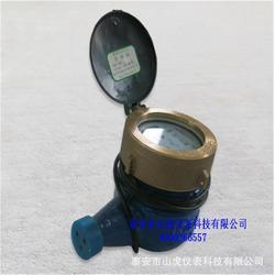 远传水表、山虎仪表(优质商家)、远传水表安装图片