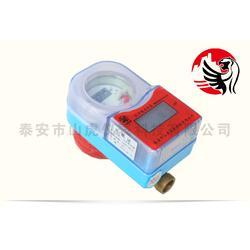 重庆ic卡水表、山虎仪表、ic卡水表报价图片