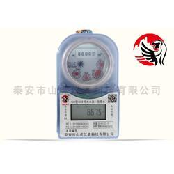 智能水表,山虎仪表(在线咨询),智能水表热量表图片