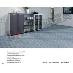安徽文件柜_合肥雷奥办公家具(在线咨询)_保密文件柜图片