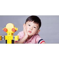苏州七彩大风车文化传媒 东方娃娃乐高培训-乐高图片